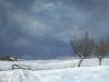 Winter over de polder